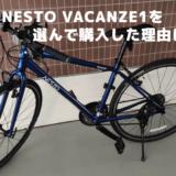 NESTO VACANZE1を選んで購入した理由について